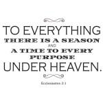 ecclesiastes 3